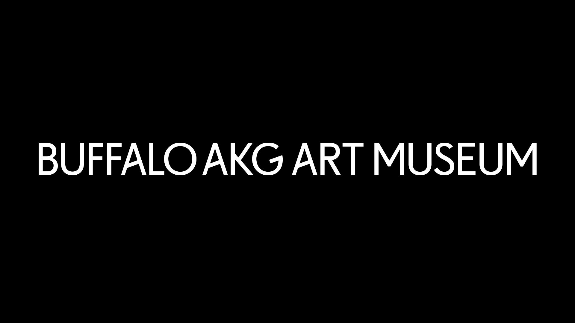 Buffalo AKG Art Museum